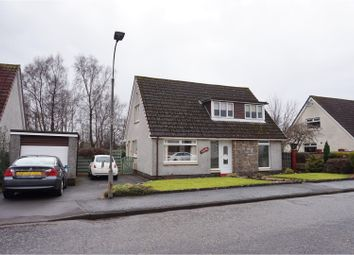 Thumbnail 4 bed detached house for sale in Braehead, Alloa