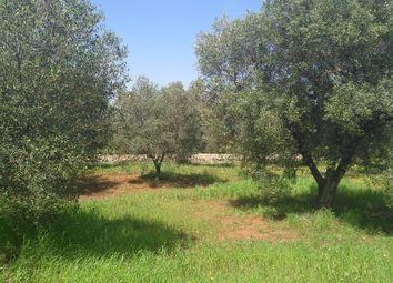 Thumbnail Land for sale in Via Specchia, Carovigno, Brindisi, Puglia, Italy