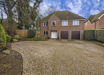 Thumbnail 4 bedroom detached house for sale in Little Basing, Old Basing, Hampshire