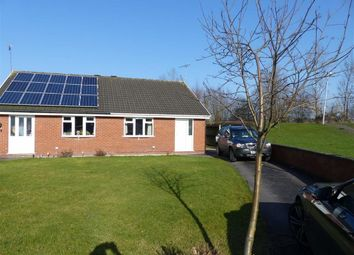 Thumbnail 2 bed semi-detached bungalow to rent in Hayling Close, Crewe