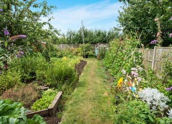 Thumbnail 2 bed bungalow for sale in The Crescent, Boughton-Under-Blean, Faversham
