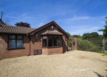 Thumbnail 4 bed detached bungalow to rent in Goldings Rise, Loughton