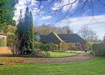 Thumbnail 6 bed bungalow for sale in Back Lane, Cross In Hand, Heathfield, East Sussex