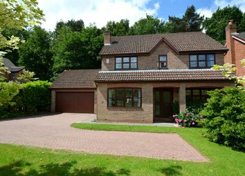 Thumbnail 4 bed detached house for sale in Sandstone Avenue, Walton, Chesterfield