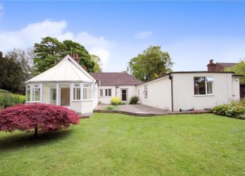 Thumbnail 5 bed detached bungalow for sale in New Barn Road, New Barn, Longfield