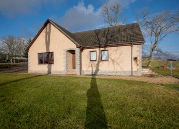 Thumbnail 4 bedroom bungalow for sale in Grange, Keith