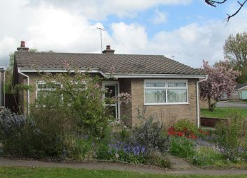 Thumbnail 2 bedroom detached bungalow for sale in Park Road, Halesworth