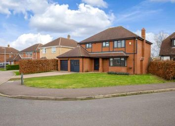Thumbnail 4 bed detached house for sale in Haycraft Close, Grafham, Huntingdon, Cambridgeshire
