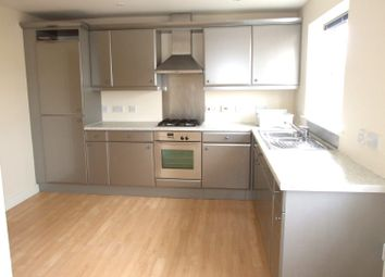Thumbnail 3 bed property to rent in Calvert Street, Derby