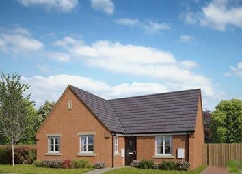Thumbnail 2 bed detached bungalow for sale in Plot 3, Edmund, Salterns, Terrington St. Clement, King's Lynn