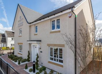 "Thumbnail 3 bed semi-detached house for sale in ""Traquair"" at Kildean Road, Stirling"