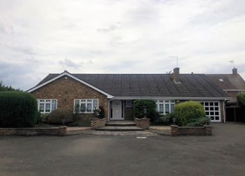 Thumbnail 4 bed detached bungalow to rent in Maidenhead, Berkshire