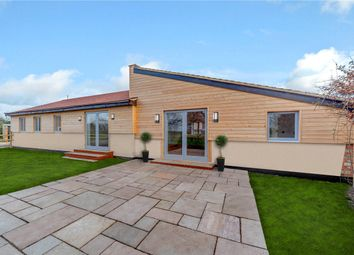 Thumbnail 3 bed bungalow for sale in Brimpton Common, Reading