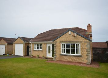 Thumbnail 2 bed bungalow for sale in Ruskin Close, High Harrington, Workington