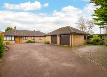 Thumbnail 5 bed detached bungalow for sale in Rampton Road, Willingham, Cambridge, Cambridgeshire
