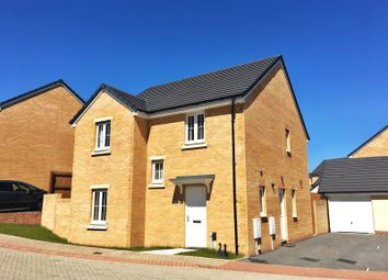 Thumbnail 4 bedroom detached house for sale in White Farm, Barry