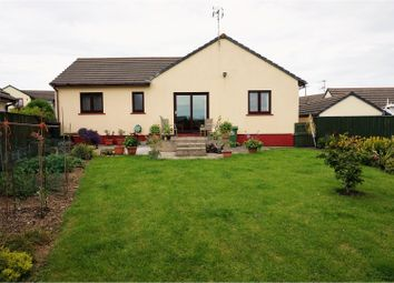 Thumbnail 4 bed detached bungalow for sale in Oakfield Drive, Kilgetty