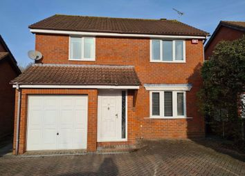 Thumbnail 4 bed property to rent in Kassel Close, Waterlooville