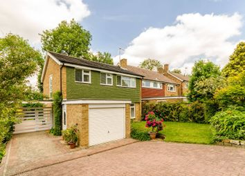 Thumbnail 4 bed detached house for sale in Cumbrae Gardens, Surbiton