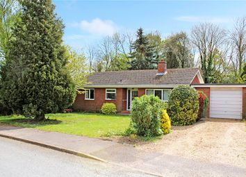 Thumbnail 3 bed detached bungalow for sale in Old Hall Gardens, Brooke, Norwich, Norfolk