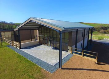 Thumbnail 4 bed detached house for sale in Chillaton, Lifton