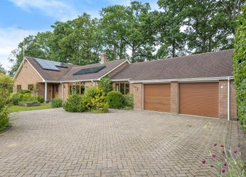 Thumbnail 4 bed detached bungalow for sale in Fleet, Hampshire