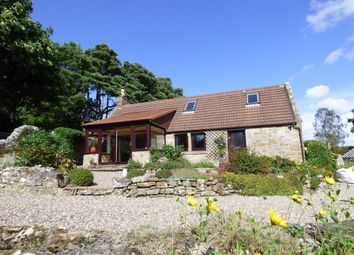 Thumbnail 4 bed cottage for sale in Blebo Craigs, Cupar