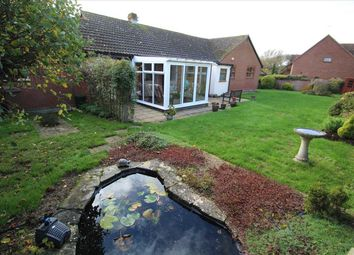 Thumbnail 4 bed bungalow for sale in Abbeydale, Lower Road, Westerfield, Ipswich