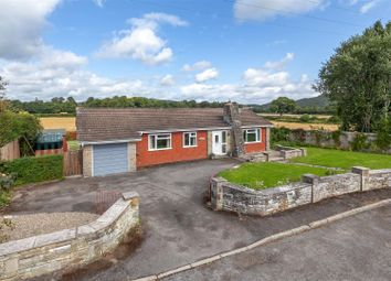Thumbnail 3 bed detached bungalow for sale in Greystones, Walton, Nr Presteigne