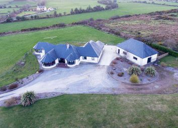 Thumbnail 4 bedroom bungalow for sale in Lackendarra Lower, Colligan, Dungarvan, Waterford