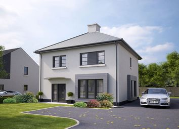 Thumbnail 4 bedroom detached house for sale in Hilltops, Magheralave Road, Lisburn
