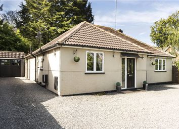 Thumbnail 3 bed bungalow for sale in Pinehill Road, Crowthorne, Berkshire