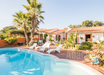 Thumbnail Farm for sale in Colegio, Lagos, Algarve, Portugal