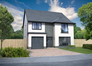 """Thumbnail 4 bedroom detached house for sale in """"Everett Garden Room """" at Church Place, Winchburgh, Broxburn"""