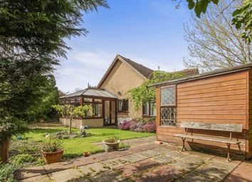 Thumbnail 3 bedroom bungalow for sale in Soham, Ely, Cambridgeshire