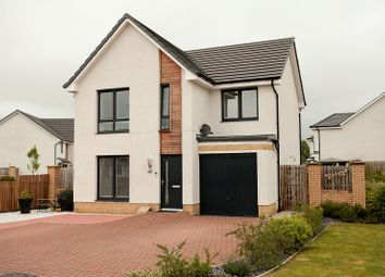 Thumbnail 4 bed detached house for sale in Paterson Drive, Dumfries, Dumfries And Galloway.