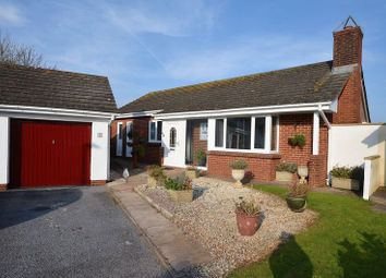 Thumbnail 3 bed bungalow for sale in Freshwater Drive, Paignton