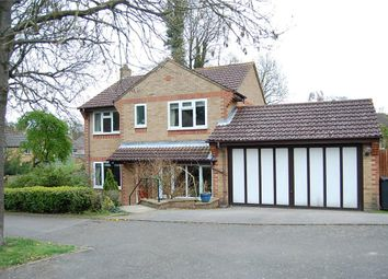 Thumbnail 4 bed detached house to rent in Old Roar Road, St Leonards-On-Sea, East Sussex