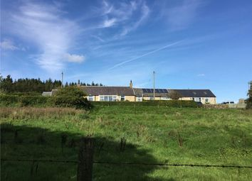 Thumbnail 3 bed detached house for sale in Harelawslack, Canonbie, Dumfriesshire