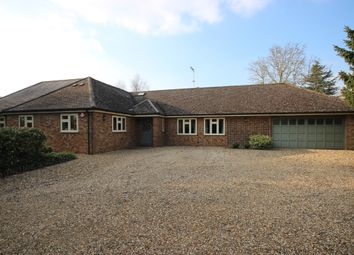 Thumbnail 4 bedroom bungalow to rent in Veilliey, Mackerye End, Harpenden, Hertfordshire