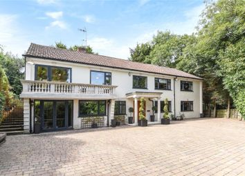 Thumbnail 6 bed detached house for sale in Debden Road, Loughton, Essex