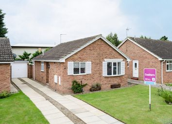 Thumbnail 2 bed detached bungalow to rent in Malbys Grove, Copmanthorpe, York