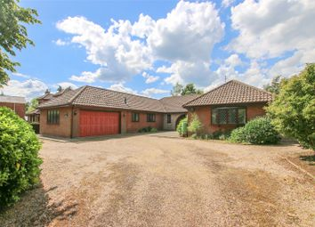 Thumbnail 4 bed bungalow for sale in Walesby Road, Market Rasen, Lincolnshire