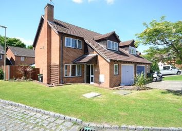 Thumbnail 3 bed semi-detached house to rent in Dewpond Walk, Lychpit, Basingstoke