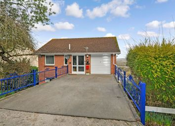 Thumbnail 5 bed detached house for sale in Seymour Road, Newton Abbot
