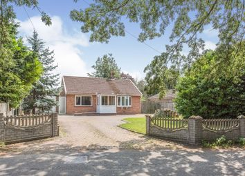 Thumbnail 3 bed bungalow for sale in Croft Lane, Diss