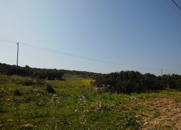 Thumbnail Land for sale in Karpaz