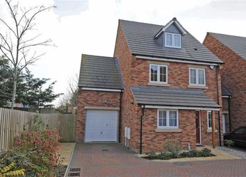 Thumbnail 4 bed detached house to rent in Harrowden Gardens, Wellingborough