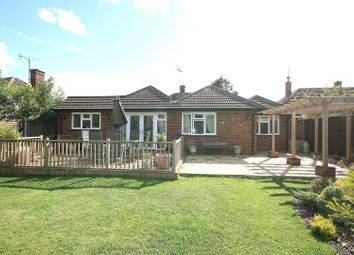 Thumbnail 4 bed detached bungalow for sale in Church Lane, Eaton Bray, Beds