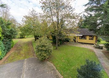 3 bed detached bungalow for sale in Fen Lane, Garboldisham, Diss, Norfolk IP22